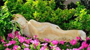 Landscaping, custom landscaping, las vegas, chip-n-dale's custom landscaping